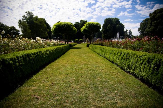 Peninsula Park Rose Garden | Portland City Guide | meltingbutter.com